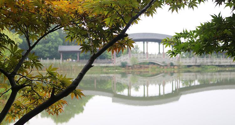 Город Чунцин