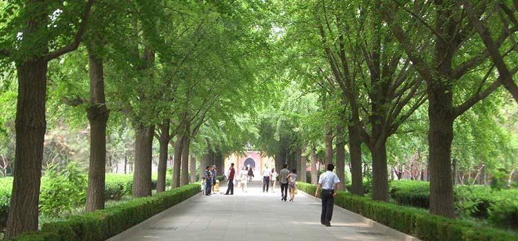 Погода в Китае в июне